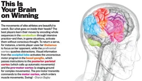 This is your brain on winning - Newsweek